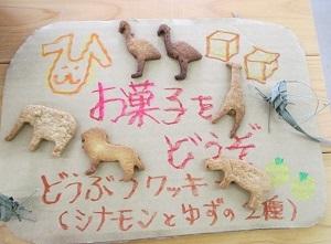 Zooお菓子.JPG